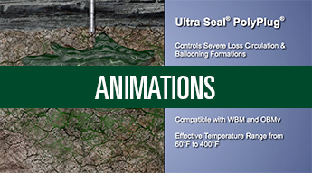 Click Here to View our Library of Animations